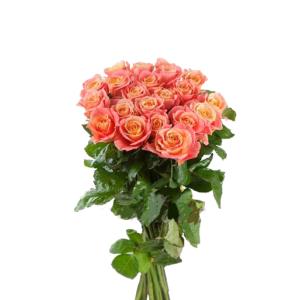 Роза розовая Мисс Пигги букет 21 шт 70 см