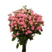 Роза спрей Лидия букет 20 шт 40 см