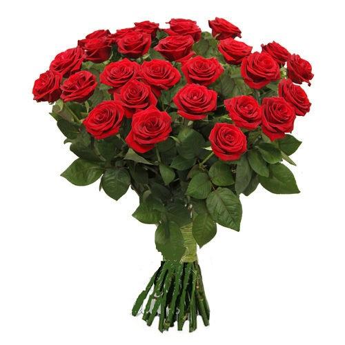 Роза красная Престиж букет 21 шт 80 см