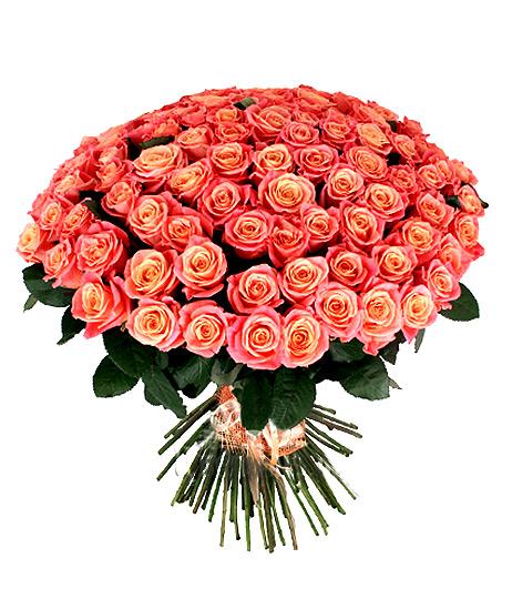 Букет розовых роз Мисс Пигги 70 см 101 роза