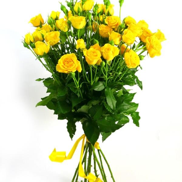 Роза спрей Шани желтая