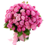 Роза спрей Леди Бобастик