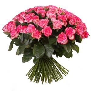 Роза бело розовая Джумилия букет 101 шт 50 см
