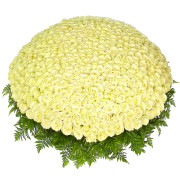 Букет 1001 роза белая