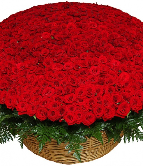 Букет 1001 роза