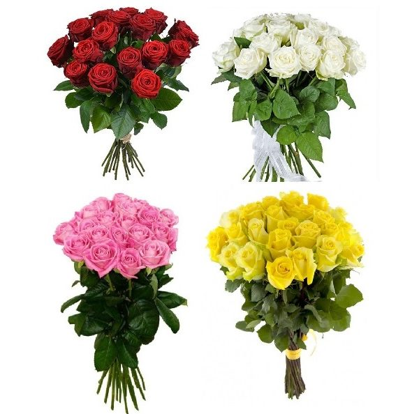 Букет роза 21 шт 50 см