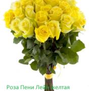 Роза 21 шт Пени Лейн