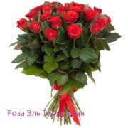 Роза 21 шт Эль Торро