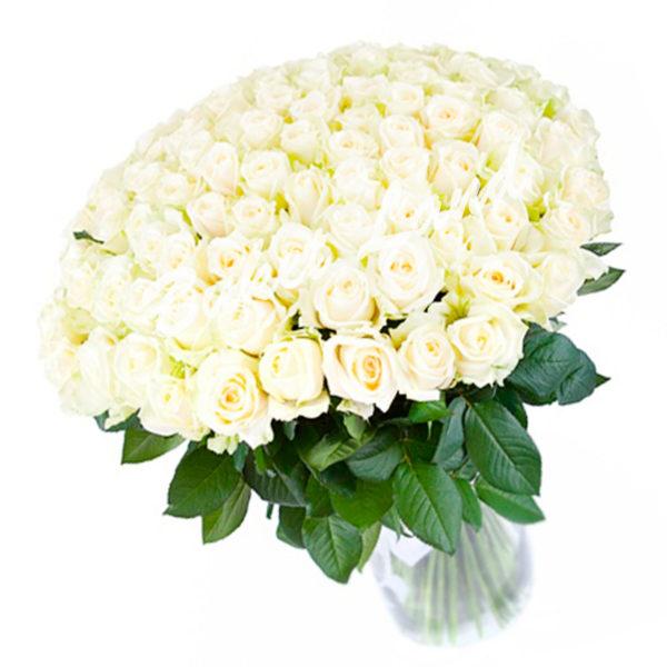 Букет Белые розы 101 шт 50см