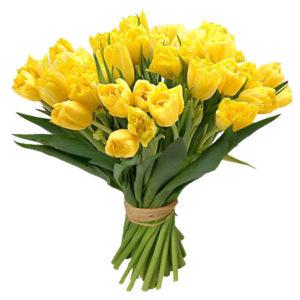 Тюльпаны желтые букет 19 шт