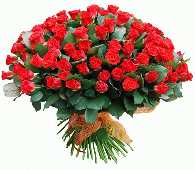 Букет 101 роза Эль Торо 50 см