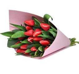 Красные тюльпаны букет 11 шт