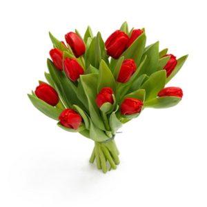 Красные тюльпаны букет 15 шт