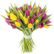 Букет микс тюльпаны 51 шт