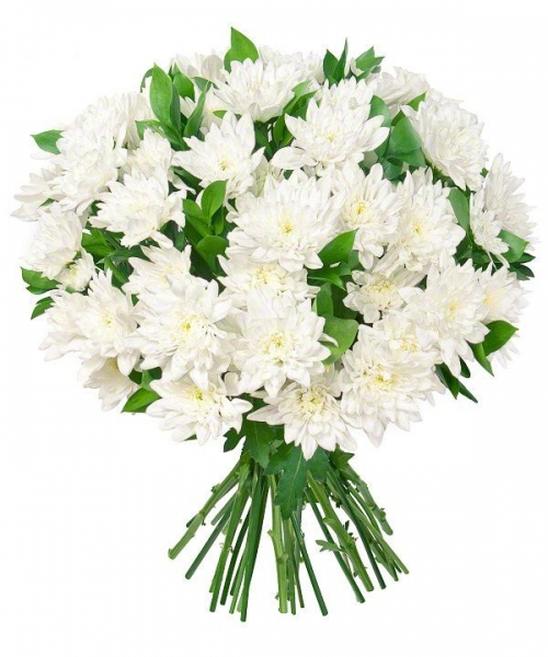Букет хризантем 15 шт микс белый