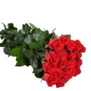 Букет красных роз Ред Игл 21 шт 60 см