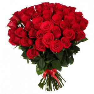 Роза красная Ред Игл букет 51 шт 60 см