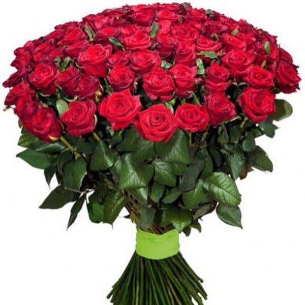 Букет 101 роза красная Престиж 60 см