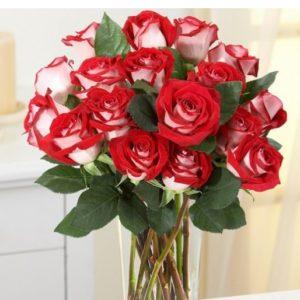 Букет роза Парадиз 21 шт 55 см