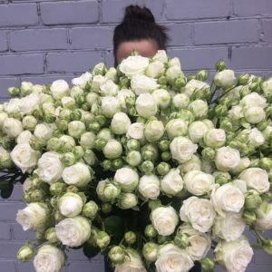 Роза спрей 60 см Леди Бомастик букет 19 шт