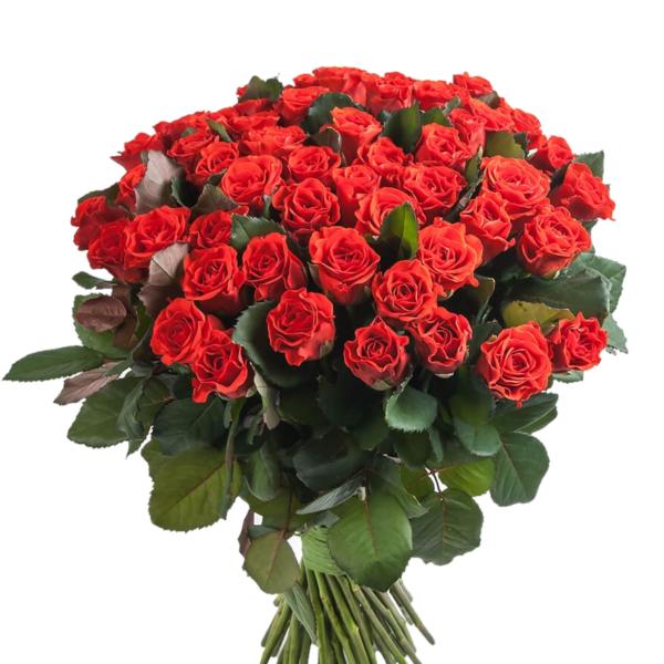 Роза алая Эль Торо букет 51 шт 40 см