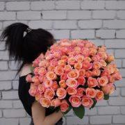 Роза Мисс Пиги