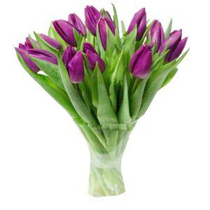 Тюльпаны фиолетовые букет 19 шт
